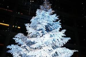 KITTEのツリー、すごい、きれい!